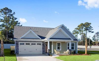 North Myrtle Beach Single Family Home For Sale: 1100 Doubloon Drive