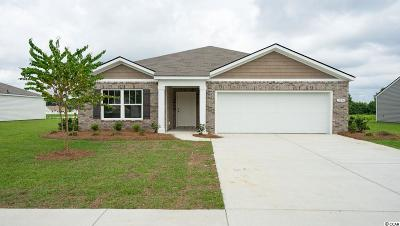 Conway Single Family Home For Sale: 3254 Holly Loop