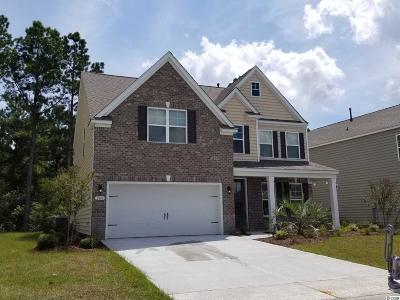 Myrtle Beach Single Family Home For Sale: 2808 Scarecrow Way