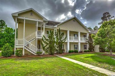 Georgetown County, Horry County Condo/Townhouse For Sale: 5876 Longwood Drive #202 #202