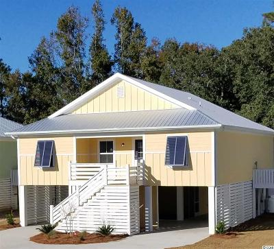 Pawleys Island Single Family Home For Sale: 63 Tidelands Trail
