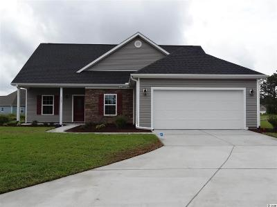 Conway Single Family Home Active-Pend. Cntgt. On Financi: 1045 Hopscotch Lane