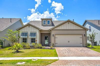 Horry County Single Family Home For Sale: 1821 Bluff Drive