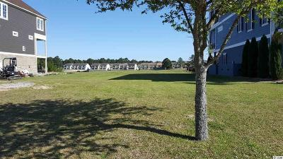 Georgetown County, Horry County Residential Lots & Land For Sale: 324 W Palms Dr.