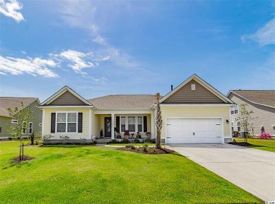 North Myrtle Beach Single Family Home For Sale: 1312 E Island Drive