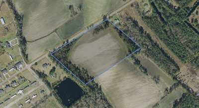 Horry County Residential Lots & Land Active-Pending Sale - Cash Ter: Tbd 11.19 Ac Hallie Martin Rd