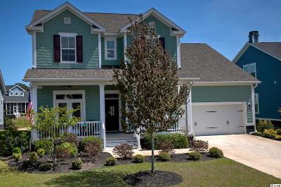 Pawleys Island Single Family Home For Sale: 85 Winston Circle