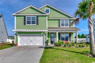 Myrtle Beach Single Family Home For Sale: 249 Coral Beach Circle