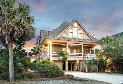 Pawleys Island Single Family Home For Sale: 807 Norris Dr.