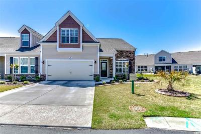 Murrells Inlet Condo/Townhouse For Sale: 179 Parmelee Drive #E