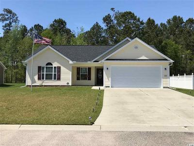 Horry County Single Family Home For Sale: 288 Beulah Circle