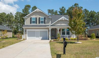 Murrells Inlet Single Family Home For Sale: 148 Shenandoah Dr