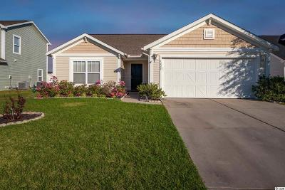 Myrtle Beach Single Family Home For Sale: 1227 Eagle Creek Dr.