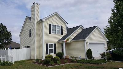 Myrtle Beach Single Family Home For Sale: 4825 Southgate Pkwy