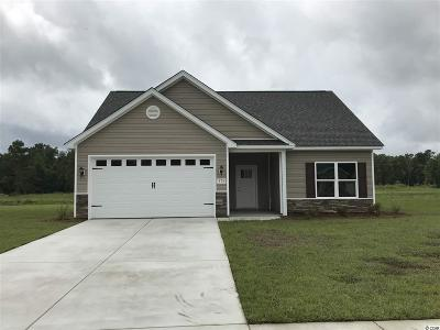 Conway Single Family Home For Sale: 176 Springtide Drive