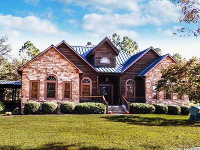 Georgetown Single Family Home For Sale: 420 Sam M Williams Drive