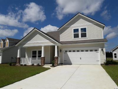 Myrtle Beach Single Family Home For Sale: 281 Harbison Circle