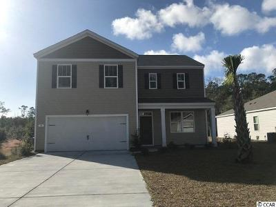 Pawleys Island Single Family Home For Sale: 74 Parkside Drive