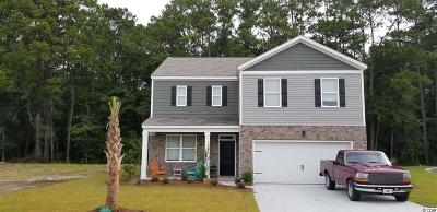 Pawleys Island Single Family Home For Sale: 77 Parkside Drive