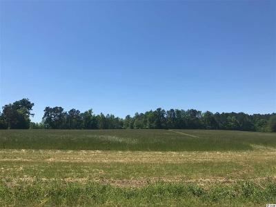 Galivants Ferry SC Residential Lots & Land For Sale: $105,000