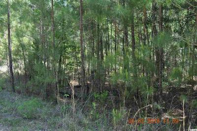 Residential Lots & Land For Sale: Lot 1014 W Stewart