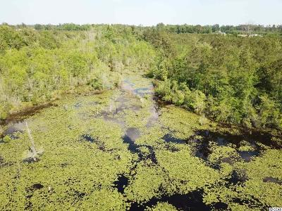Horry County Residential Lots & Land For Sale: 100 Mill Pond Road