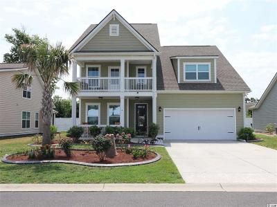 Myrtle Beach Single Family Home For Sale: 261 Coral Beach Circle