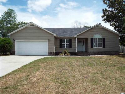 Myrtle Beach Single Family Home For Sale: 648 Blackstone Dr.