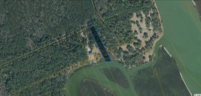 Georgetown County, Horry County Residential Lots & Land For Sale: Tbd Little River Neck Rd.