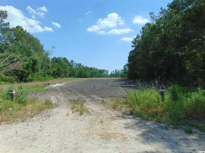 Horry County Residential Lots & Land For Sale: Tbd Wise Farm Road