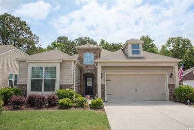 Murrells Inlet Single Family Home For Sale: 419 Buck Run Rd