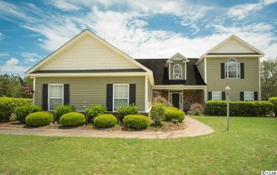 Georgetown Single Family Home For Sale: 378 Pringle Ferry Road