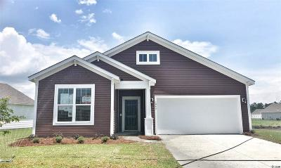 Myrtle Beach Single Family Home For Sale: 1043 Caprisia Loop