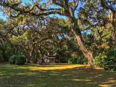 Pawleys Island Single Family Home For Sale: 190 Live Oak Lane