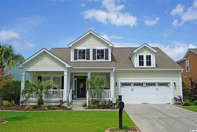 Murrells Inlet Single Family Home For Sale: 755 Dreamland Drive