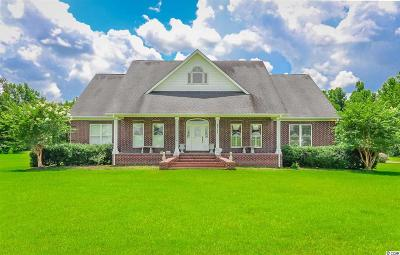 Galivants Ferry SC Single Family Home For Sale: $385,000
