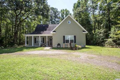 Georgetown Single Family Home Active-Hold-Don't Show: 84 N Christmas Lane