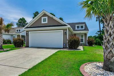 Myrtle Beach Single Family Home For Sale: 324 Stafford Dr.