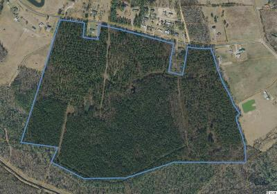 Georgetown County, Horry County Residential Lots & Land For Sale: Tbd Highway 746