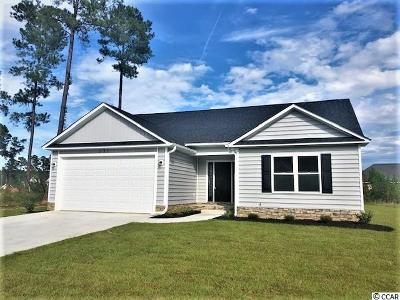 Conway Single Family Home For Sale: 131 Silver Peak Dr.