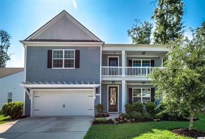 Pawleys Island Single Family Home For Sale: 30 Parish Road