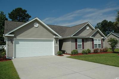Murrells Inlet Single Family Home For Sale: 333 St Patties Loop