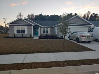 Conway Single Family Home Active-Pend. Cntgt. On Financi: 1313 Mandarin Drive
