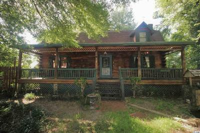Georgetown Single Family Home For Sale: 432 Apache Rd.