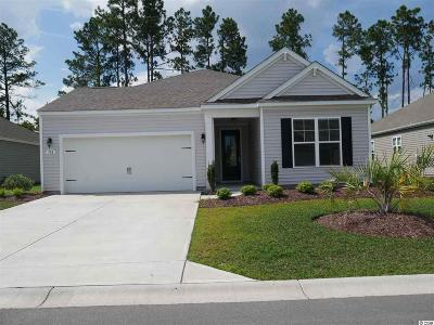 Myrtle Beach Single Family Home For Sale: 384 Firenze Loop