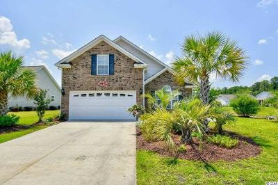 Surfside Beach Single Family Home For Sale: 1137 Spalding Ct