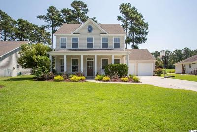Georgetown County, Horry County Single Family Home For Sale: 617 Tidal Point Ln.