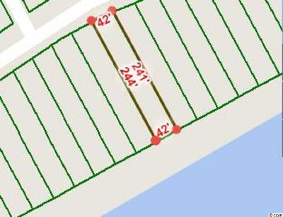 Georgetown County, Horry County Residential Lots & Land For Sale: 264 W Palms Dr.