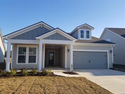 Myrtle Beach Single Family Home For Sale: 877 Berkshire Ave.