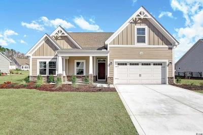 Conway Single Family Home For Sale: 250 Board Landing Cir